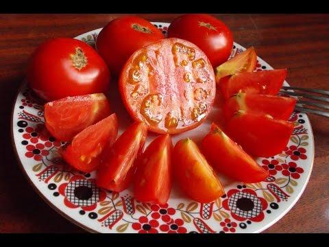 """Сорт томата """"Скороспелка"""""""