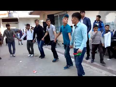 Amazing Traditional Kurdish Dance By Group of Young Boys   Must Watch