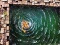 Miniature Terrain: Water & Waves