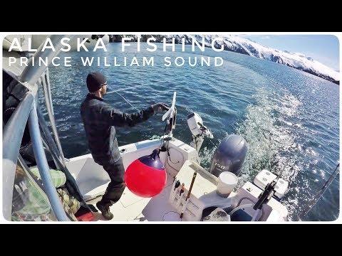 Alaska Fishing Adventure | Prince William Sound & Whittier Harbor