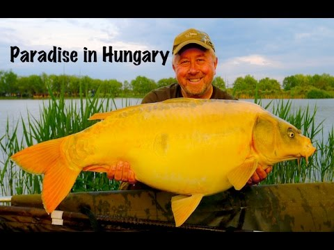 Paradise in Hungary