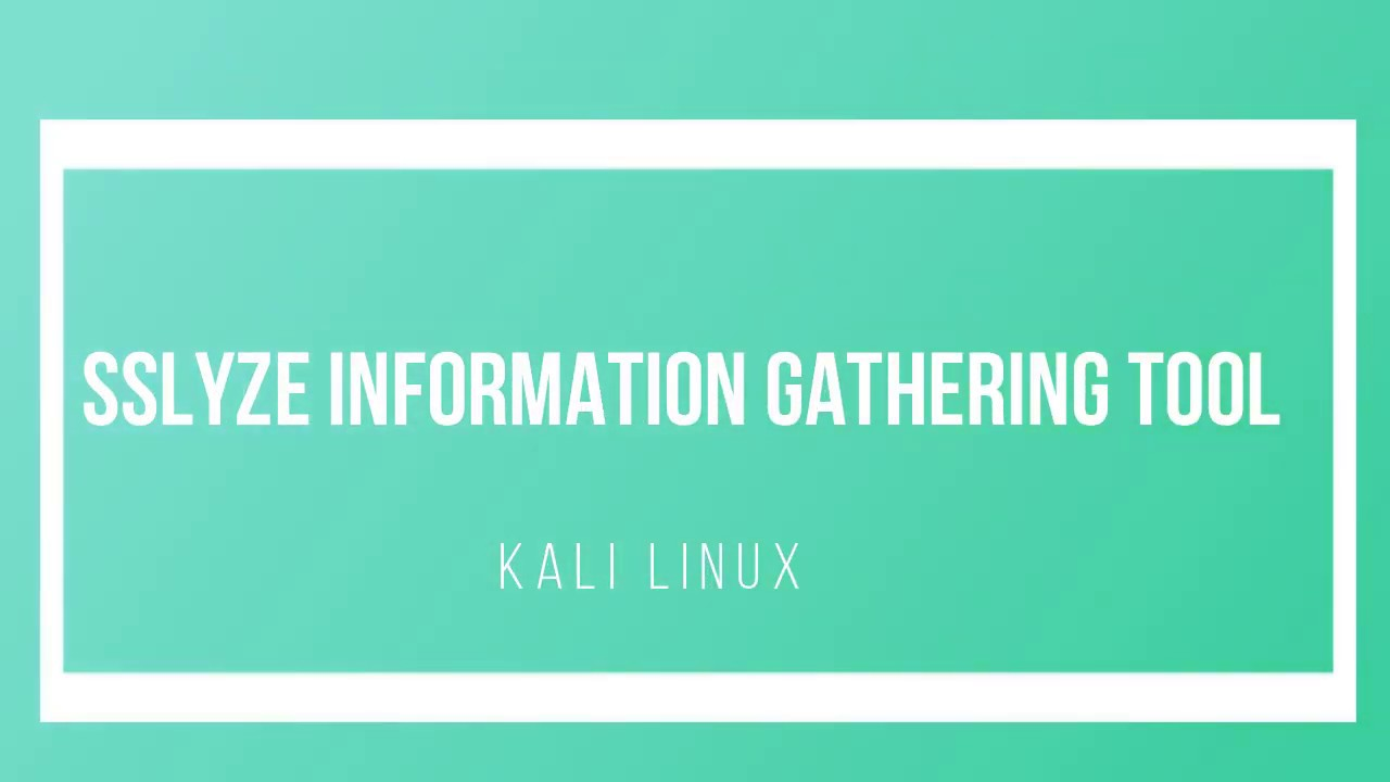 4  sslyze Information Gathering Tool - Kali Linux