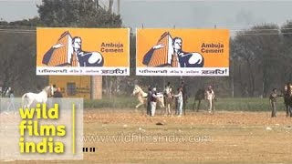 Participants in action during horse race, Punjab
