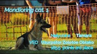 "MR1 ""Mafia"".Neiyubina Tamara Mondioring cat. 1 VEO Uzurpator Zolotoe Oblako 185.5 points 2rd place"