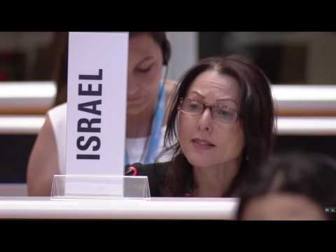 Israel gives statement before vote to single out Israel at UN's 2017 World Health Assembly