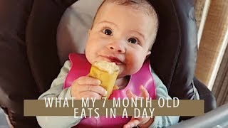 What My 7 Month Old Eats In A Day // Intro To Baby Led Weaning