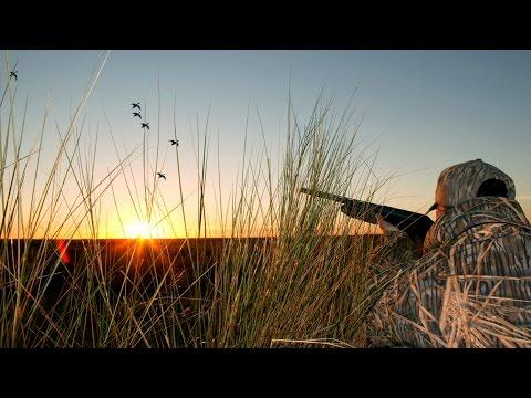 Duck Hunting In Southwest Louisiana