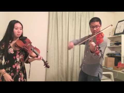 Blank Space- Taylor Swift (violin and viola cover)