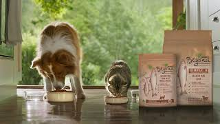 Purina® Beyond® high quality dog and cat food made with selected natural ingredients