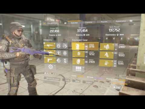 Tom Clancy's The Division my gold build