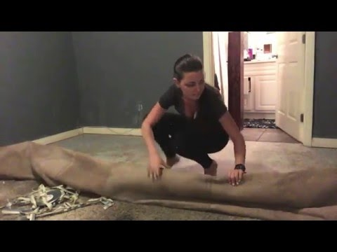 Mini Bedroom Makeover | DIY Carpet Install and Wood Wall