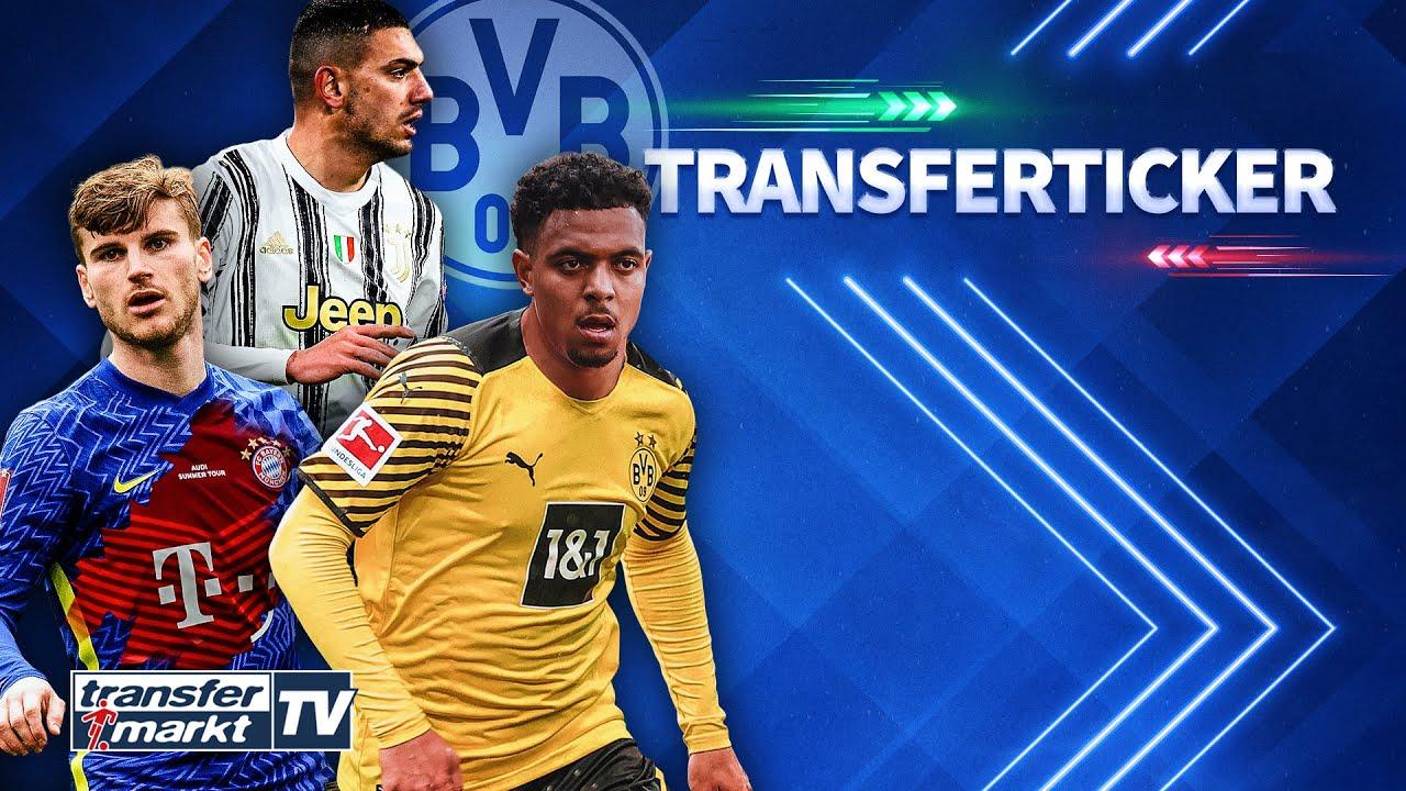 Download BVB: Malen-Deal fast perfekt – Interesse an Demiral / Bayern-Gerüchte um Werner? | TRANSFERMARKT