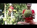 Survival skills: Finding Natural jackfruit in Wild for Food - Ripe jackfruit eating delicious