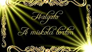Download Gabi   Hallgato   A Miskolci Börtön wmv MP3 song and Music Video