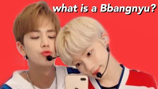 what is a Bbangnyu? (The Boyz)