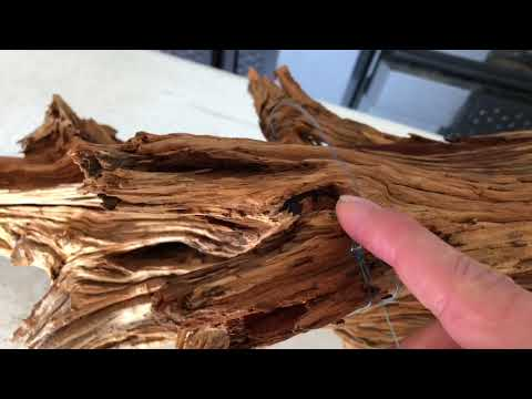 Securing large drift wood in the aquarium