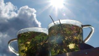 видео иван-чай в Санкт-Петербурге