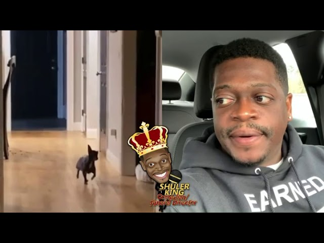 Laugh out Loud : Comedian Shuler King – She Put The Dog In There With The Food 6/7/21