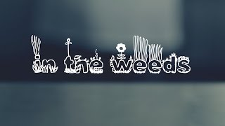 In The Weeds | Chef Slang