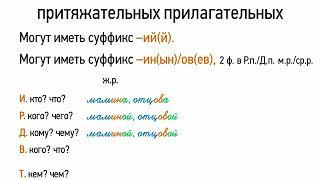 склонение притяжательных прилагательных (6 класс, видеоурок-презентация)