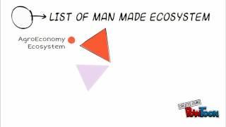 MAN-MADE ECOSYSTEM