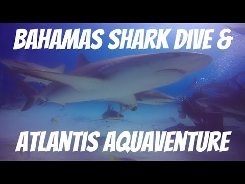 Bahamas Travel Video: Shark Dive Stuart Cove, Atlantis, Aquaventure Water Park | TravelDocMD