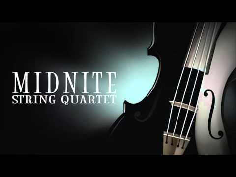 All the Small Things MSQ Performs blink 182  Midnite String Quartet