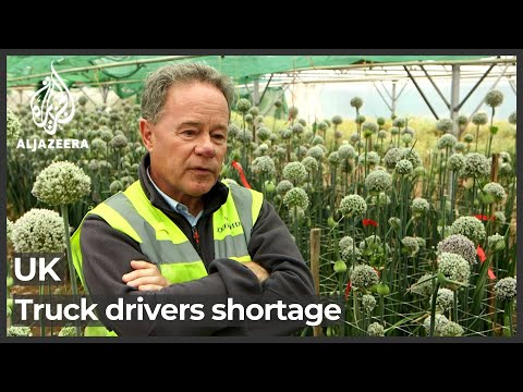 UK truck driver shortage: Businesses warn of supply chain collapse