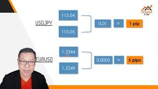 Forex สอน เทรด : 255 - What is PiP? (ส่วนหนึ่งจากคอร์ส MM Protect & Profit)