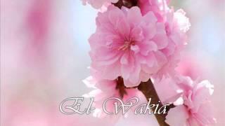 056. El- Wakia