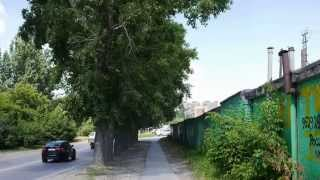 Улицы Академгородка - 33. Ул. Героев труда. 6 августа 2014 г.