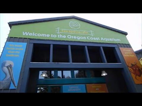 A visit to the Oregon Coast Aquarium in Newport Oregon!