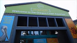 A visit to the Oregon Coast Aquarium in Newport Oregon!