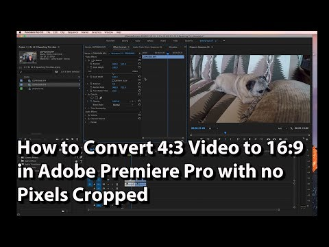 How To Convert 4:3 Video To 16:9 In Adobe Premiere Pro With No Pixels Cropped