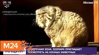 Зоопарк приглашает посмотреть на ночных животных - Москва 24