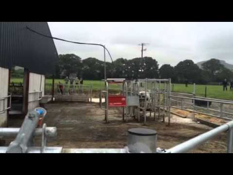 Lely Robot Grazing Farm Open Day 2015