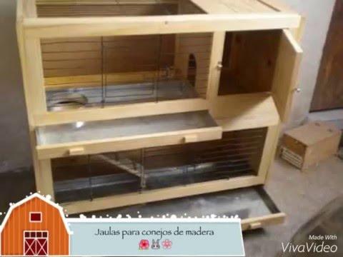 CONEJOS  Jaulas de madera  YouTube