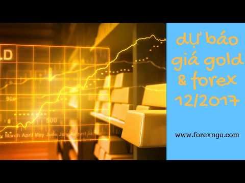 Dự Báo Giá GOld & FOREX Cùng FOREXNGO & Team Tháng 12/2017