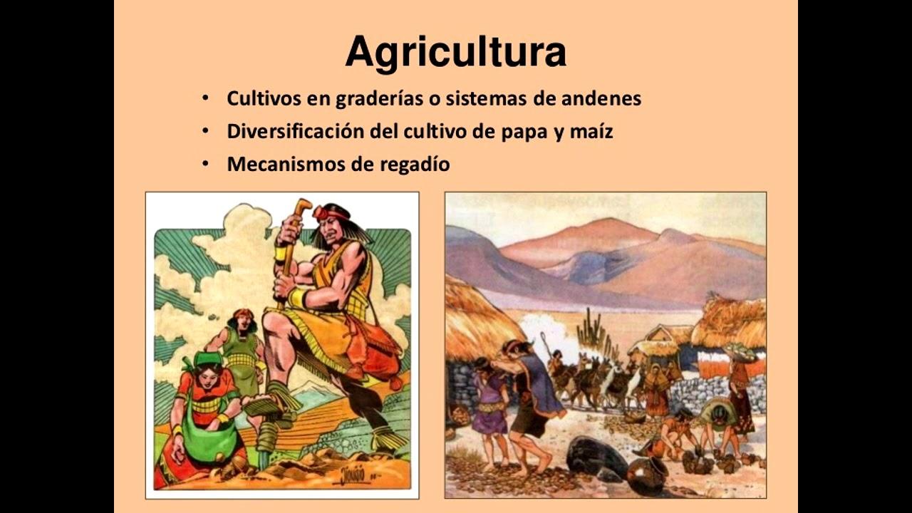 Terrazas De Cultivo Incaico