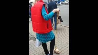 Скачать Девушка с курицей на поводке во Владивостоке