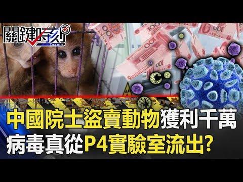 中国院士「盗卖实验动物」获利上千万! 病毒真从「P4实验室」流出!?