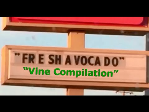 FR E SH A VOCA DO Vine Compilation - Fresh Avocado FreshAvocado Trend Comp Vines