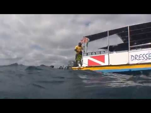 Scuba diving movie youtube - Dive in movie ...