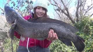 日本偶像釣手 凛花 一二粉絲俱樂部