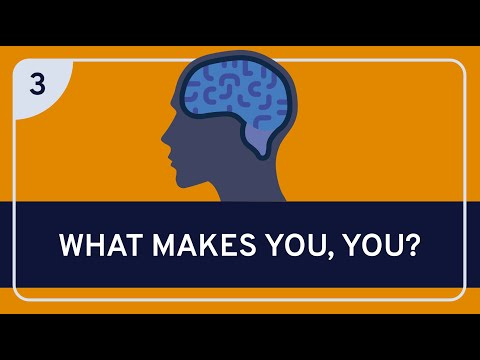 PHILOSOPHY - Mind: Personal Identity (The Essential Moral Self) [HD]