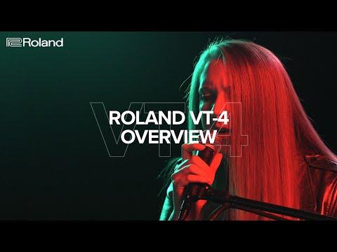 VT-4 Voice Transformer - Overview