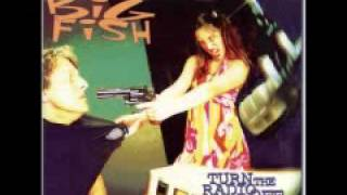 Watch Reel Big Fish All I Want Is More video