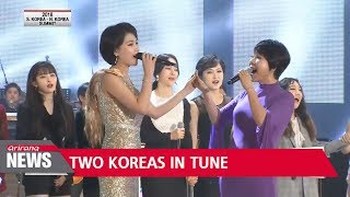 Two Korea's end joint pop concert with standing ovation