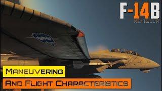 DCS World - F-14 Tomcat - Manöver und Flugeigenschaften