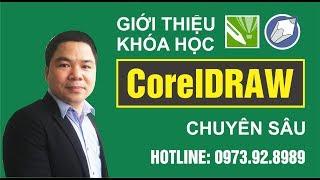 Khóa Học CorelDraw X7, CorelDraw 12 Chuyên Sâu   Học Thiết Kế Đồ Họa Cơ Bản Nâng Cao